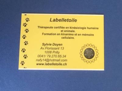 petites annonces suisse romande animaux
